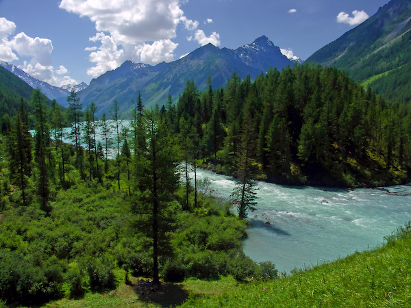 В Алтайском крае представлен новый туристический маршрут