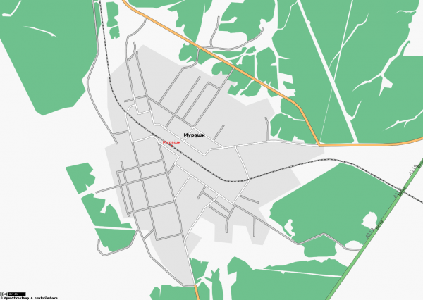 Карта города Мураши схематичная