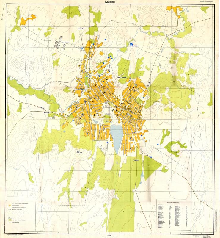 Карта Змеиногорска с улицами